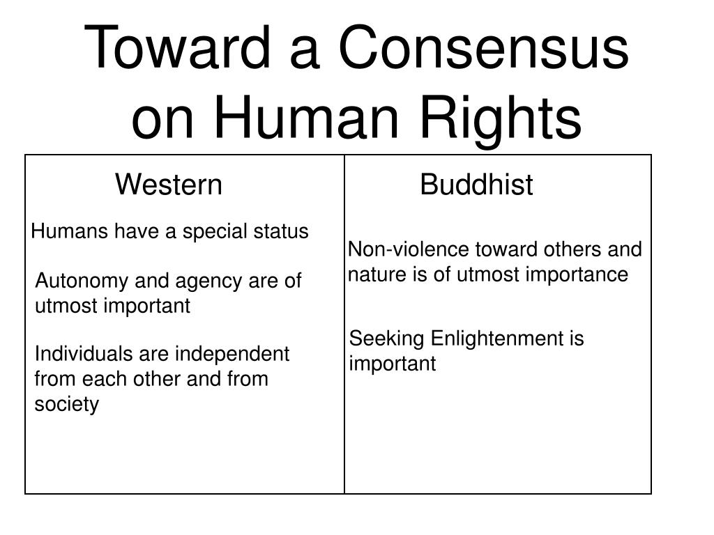 Toward a Consensus on Human Rights