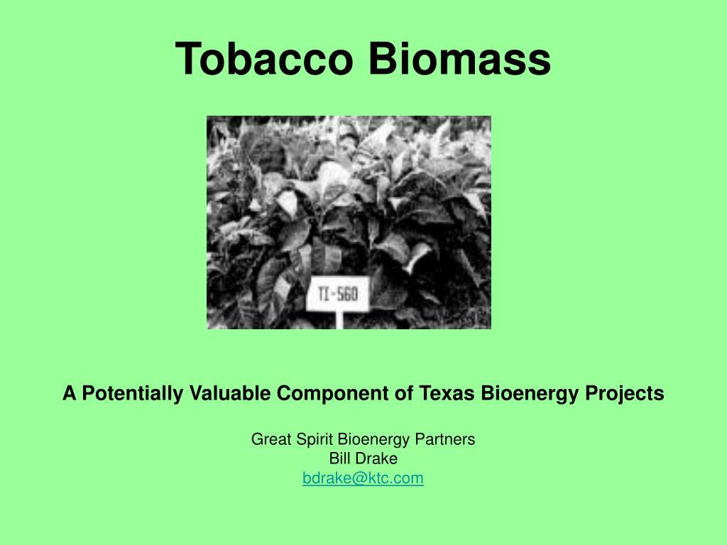 tobacco biomass l.