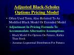 adjusted black scholes options pricing model