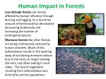 human impact in forests