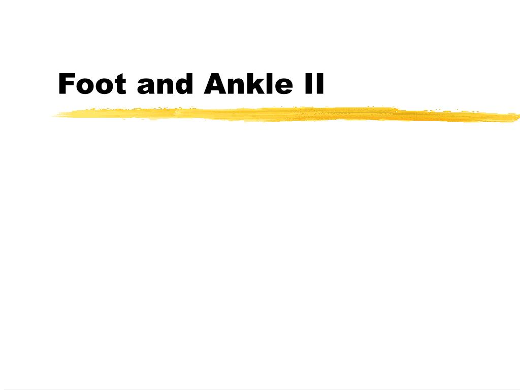 foot and ankle ii l.
