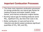 important combustion processes