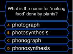 what is the name for making food done by plants