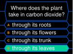where does the plant take in carbon dioxide20