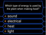 which type of energy is used by the plant when making food