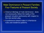male dominance in peasant families four features of peasant society