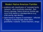 modern native american families86
