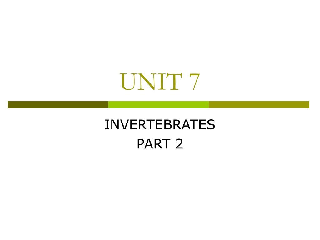 unit 7 l.