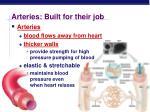 arteries built for their job
