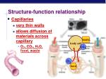 structure function relationship