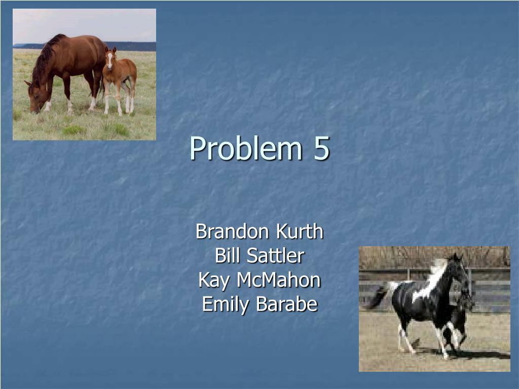 problem 5 l.