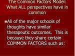 the common factors model what all perspectives have in common