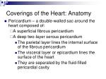 coverings of the heart anatomy