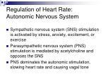 regulation of heart rate autonomic nervous system