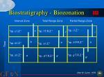 biostratigraphy biozonation