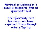 maternal provisioning of a fetus is associated with an opportunity cost