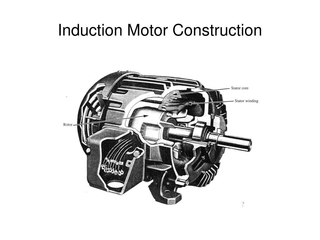 induction motor construction l.