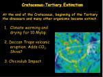 cretaceous tertiary extinction
