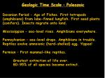 geologic time scale paleozoic33