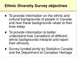 ethnic diversity survey objectives