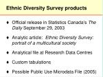 ethnic diversity survey products