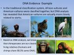 dna evidence example