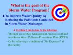 what is the goal of the storm water program