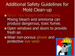 additional safety guidelines for mold clean up