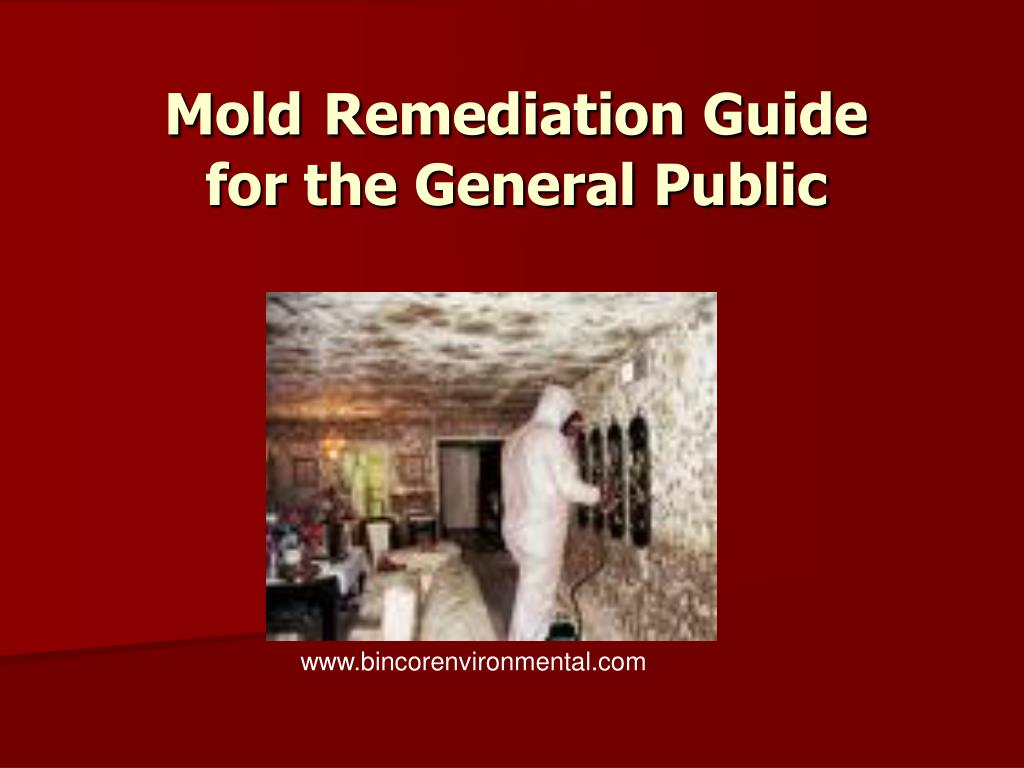 mold remediation guide for the general public l.