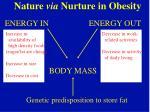 nature via nurture in obesity