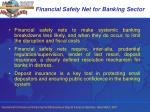 financial safety net for banking sector