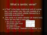what is iambic verse