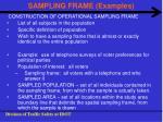 sampling frame examples