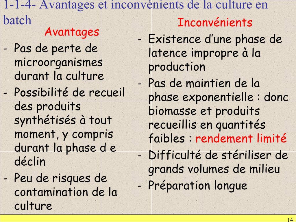 1-1-4- Avantages et inconvénients de la culture en batch