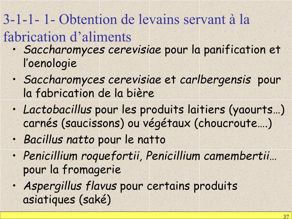 3-1-1- 1- Obtention de levains servant à la fabrication d'aliments