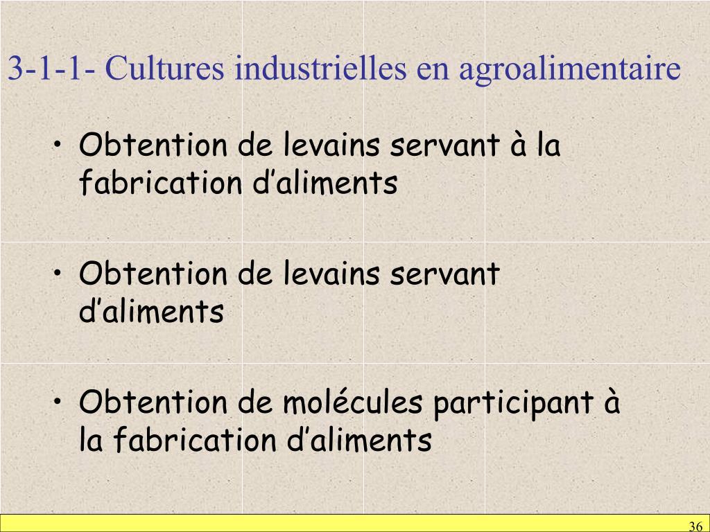 3-1-1- Cultures industrielles en agroalimentaire
