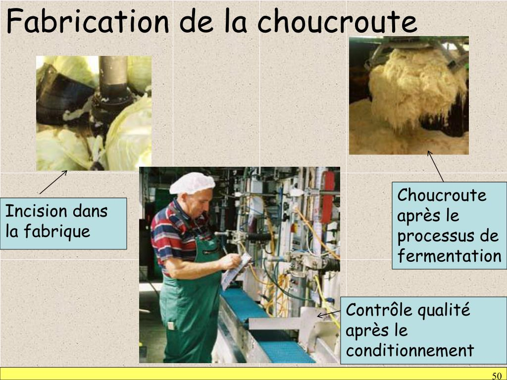 Fabrication de la choucroute