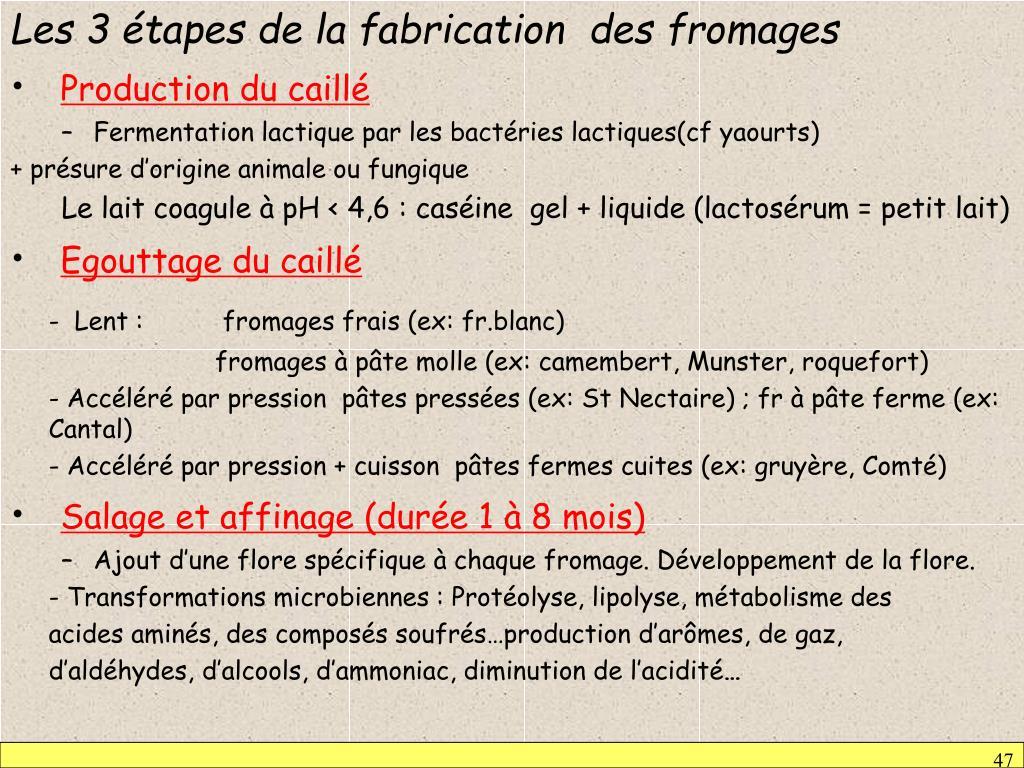 Les 3 étapes de la fabrication  des fromages