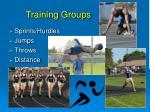 training groups