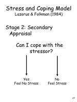 stress and coping model lazarus folkman 19847