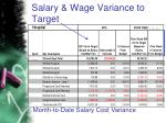 salary wage variance to target