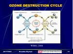ozone destruction cycle