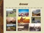 drover65