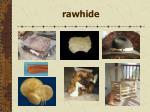 rawhide121