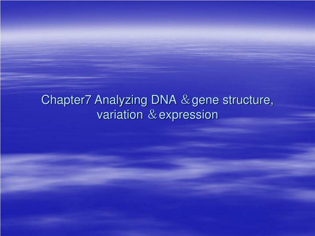 chapter7 analyzing dna gene structure variation expression l.