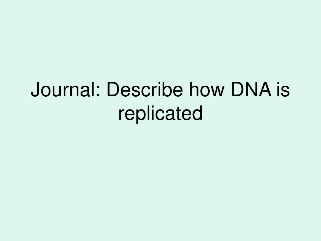 journal describe how dna is replicated l.