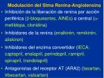 modulaci n del stma renina angiotensina