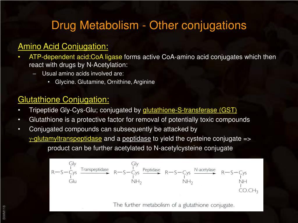 PPT - Drug Metabolism PowerPoint Presentation - ID:524660