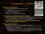 drug metabolism oxidation8