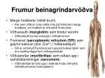 frumur beinagrindarv va9
